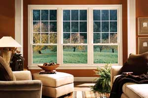 Vinyl Siding Replacement Windows Cleveland