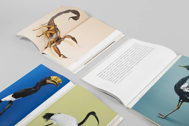 """Non più un semplice magazine, ma un ibrido con la struttura e le caratteristiche di un libro. Un """"bookazine""""."""
