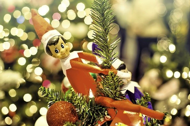 Elf on the Shelf Contest
