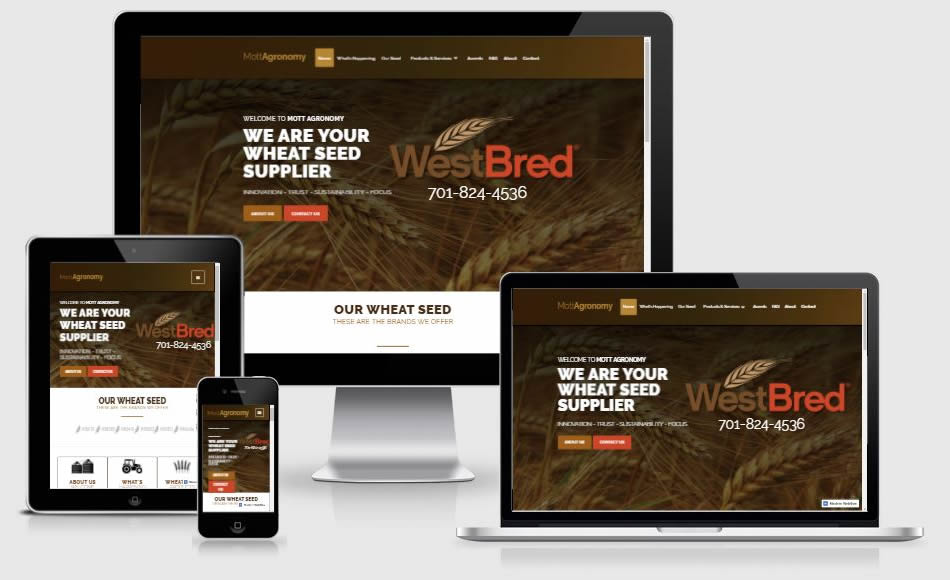 responsive website design in brainerd & baxter mn