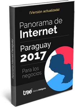 Ebook - Panorama de Internet en Paraguay para negocios.
