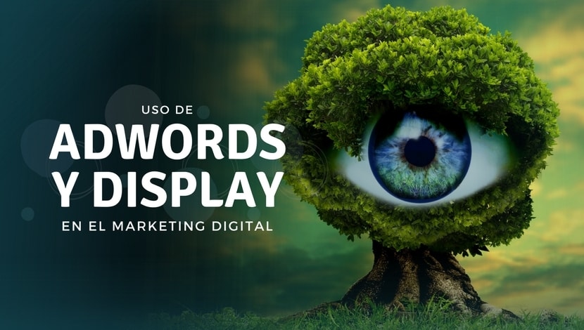 Adwords Search vs Display en Marketing Digital