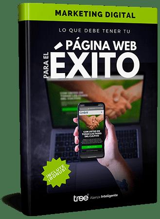 Gratuito - Ebook: Aprenda lo que debe tener tu página web para el éxito.