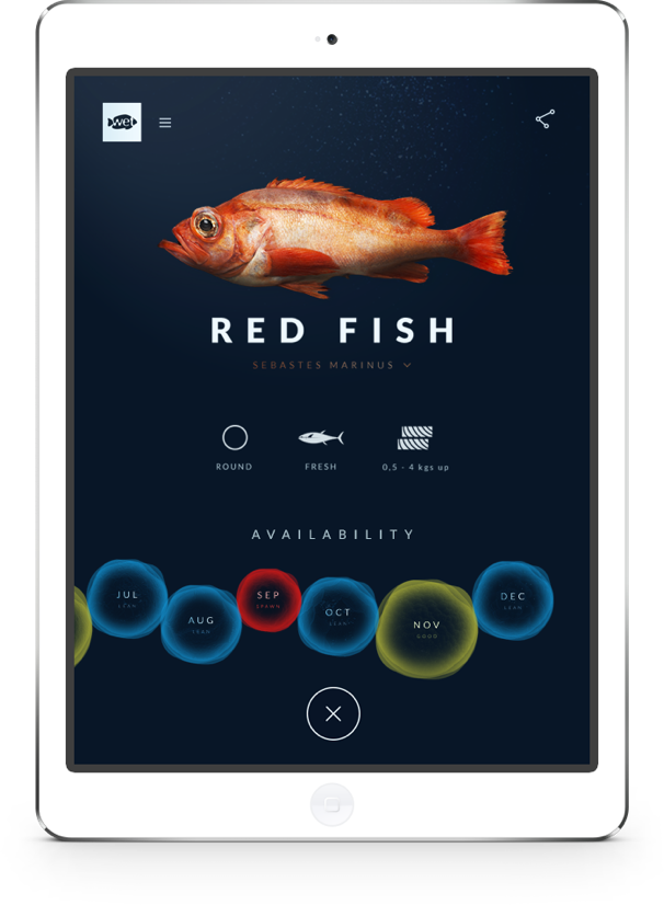 Wetfish website on iPad