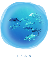Wetfish website graphic