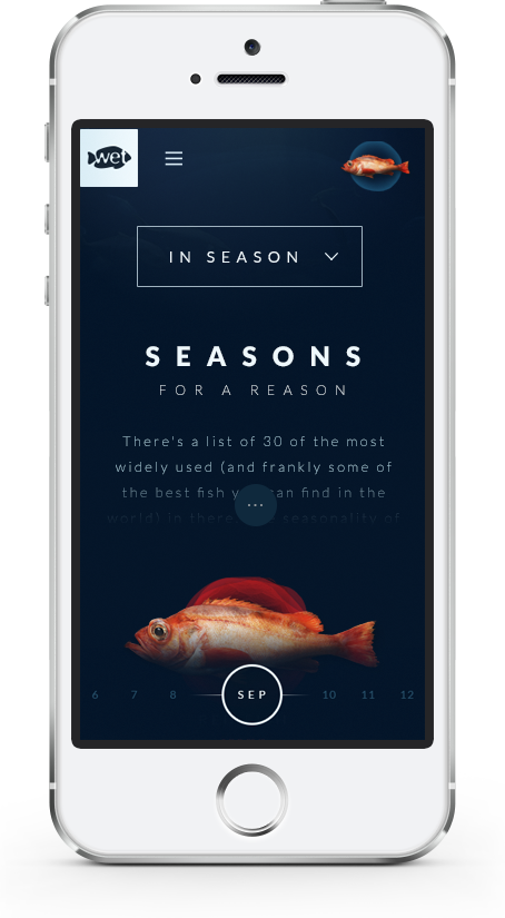 Wetfish website on mobile