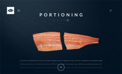 Wetfish website screens