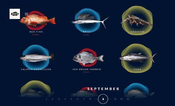 Wetfish Website