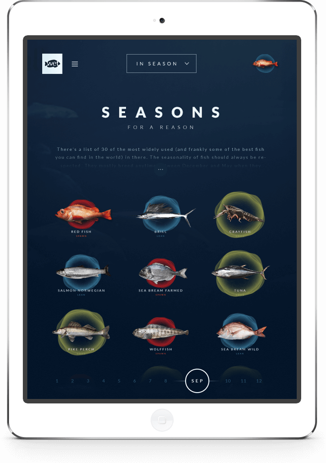 Wetfish website on tablet