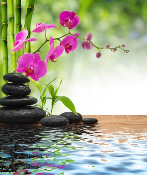 Photo of stacked smooth stones and a magenta orchid plant