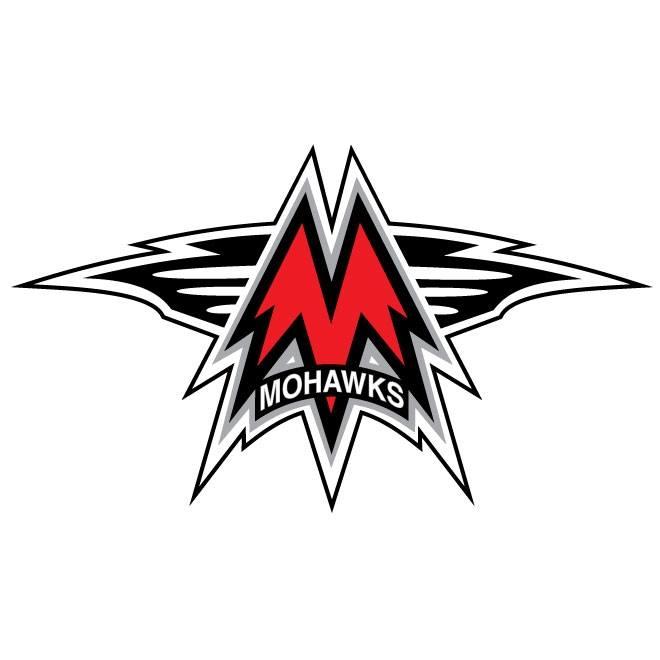 Mason City Youth Hockey