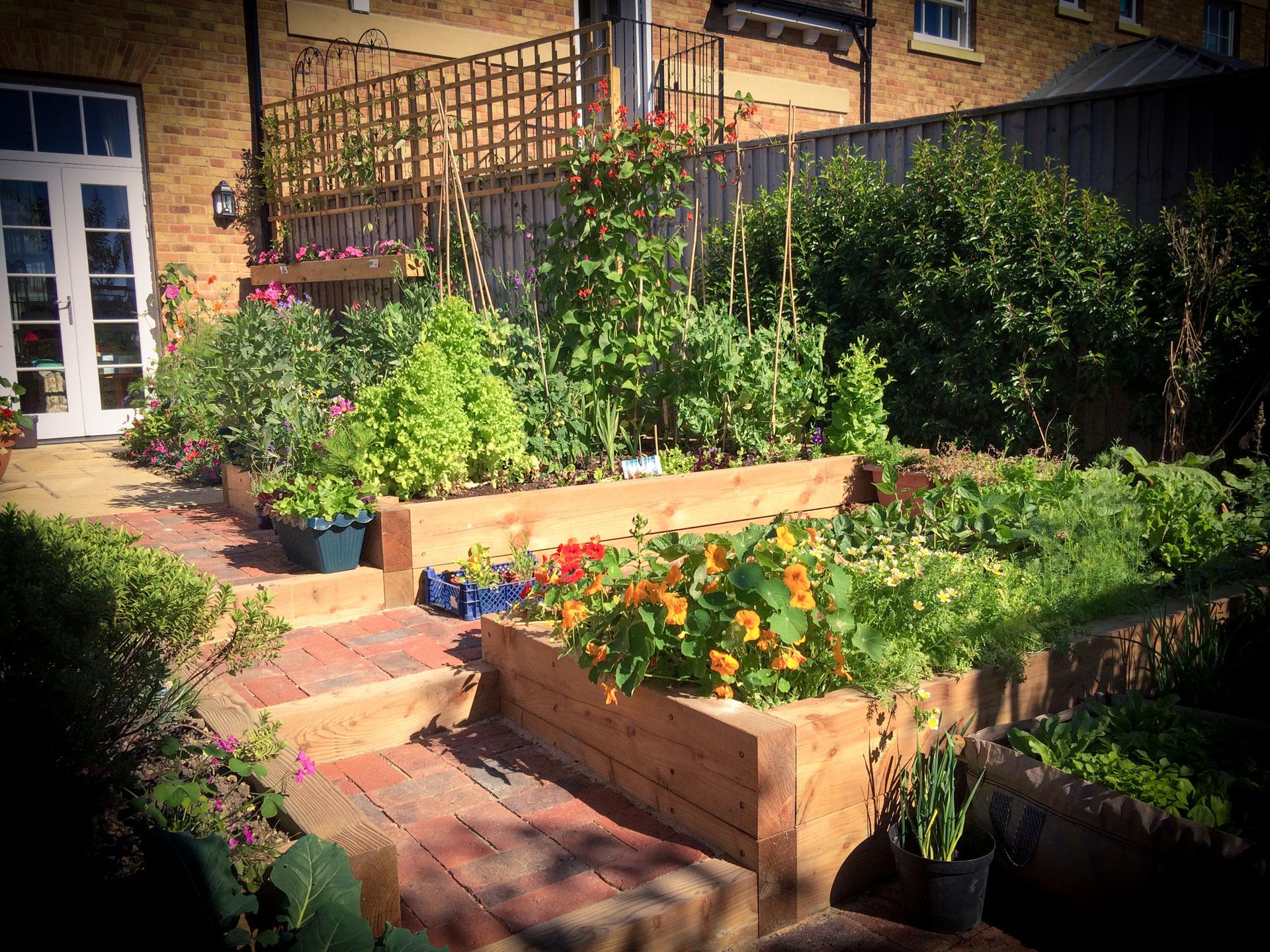Cottage Vegetable Garden Design, Dorset | Tom Hill