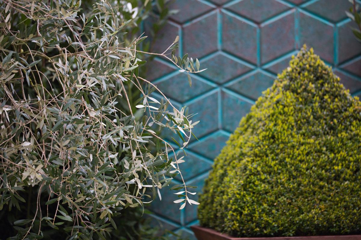 Planting against backdrop