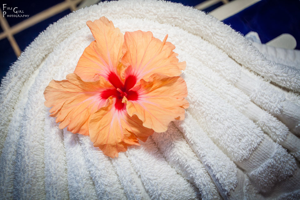 photo of fresh flower on a towel