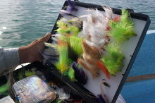 A saltwater fly box loaded with flies