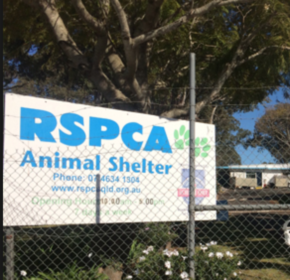 The RSPCA almost certainly has a new national position on