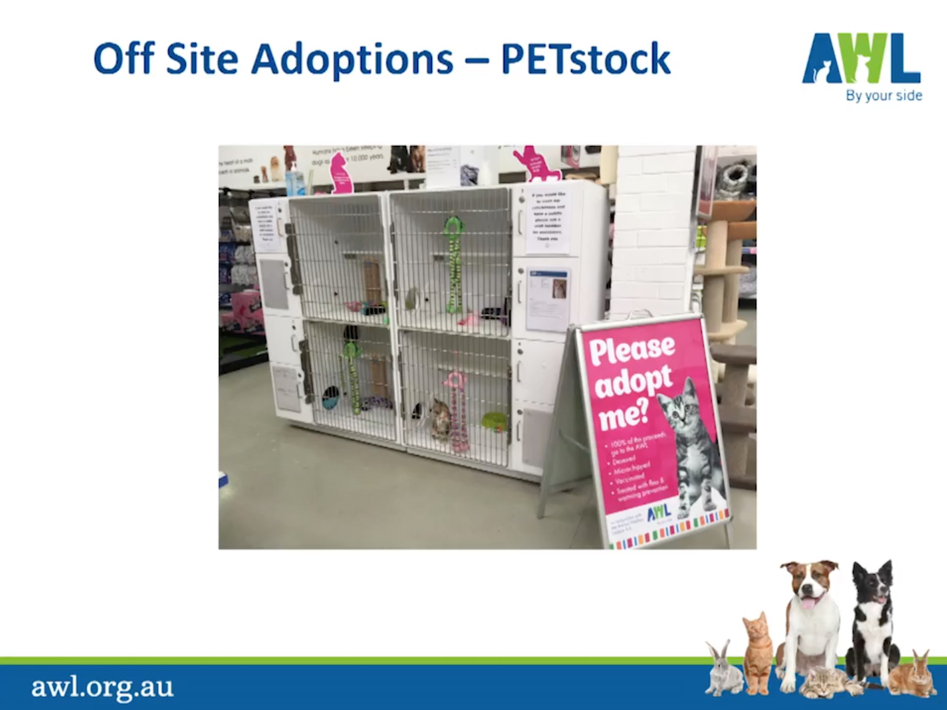 Animal Welfare League Sa Pushes Rescue Groups Out Of Petstock Statewide Saving Pets