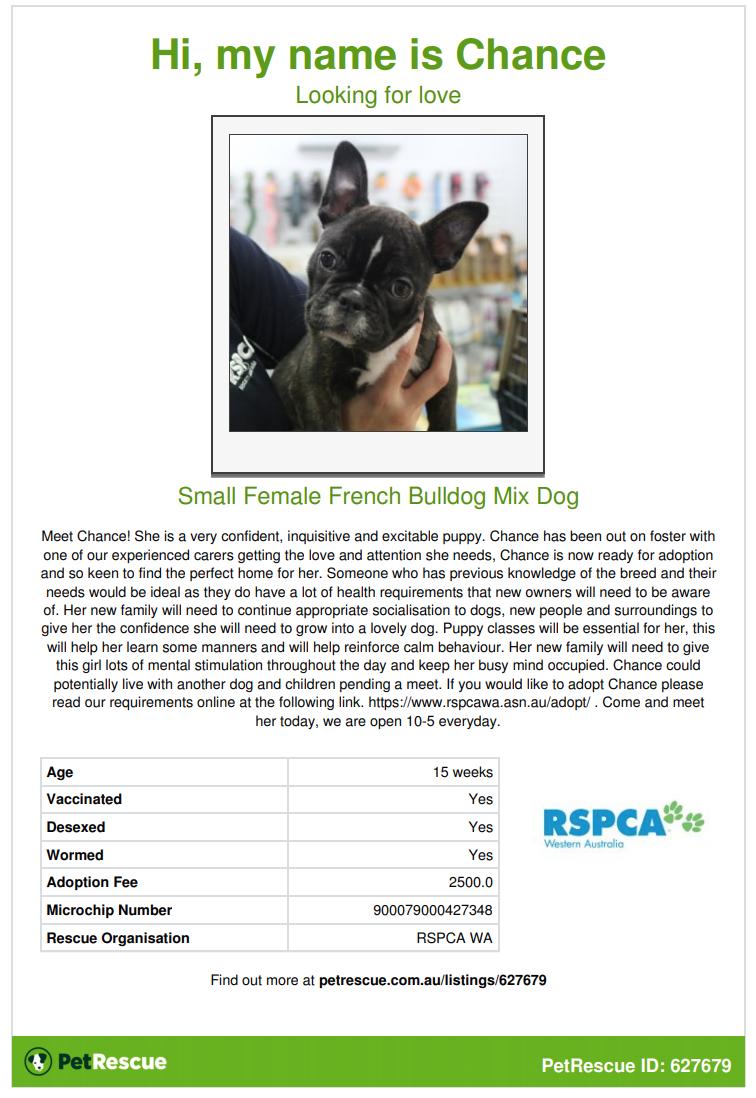 RSPCA WA Gingin raid - reference page #1 | Saving Pets