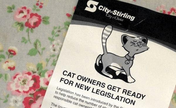 Cat_laws_WA