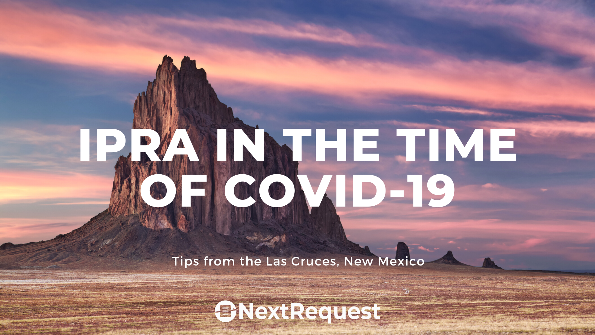 Public Records During Covid-19: Las Cruces, NM