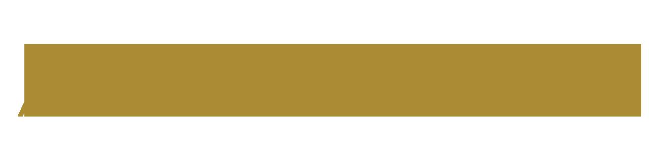 ALL MAVEN Logo 1300x300