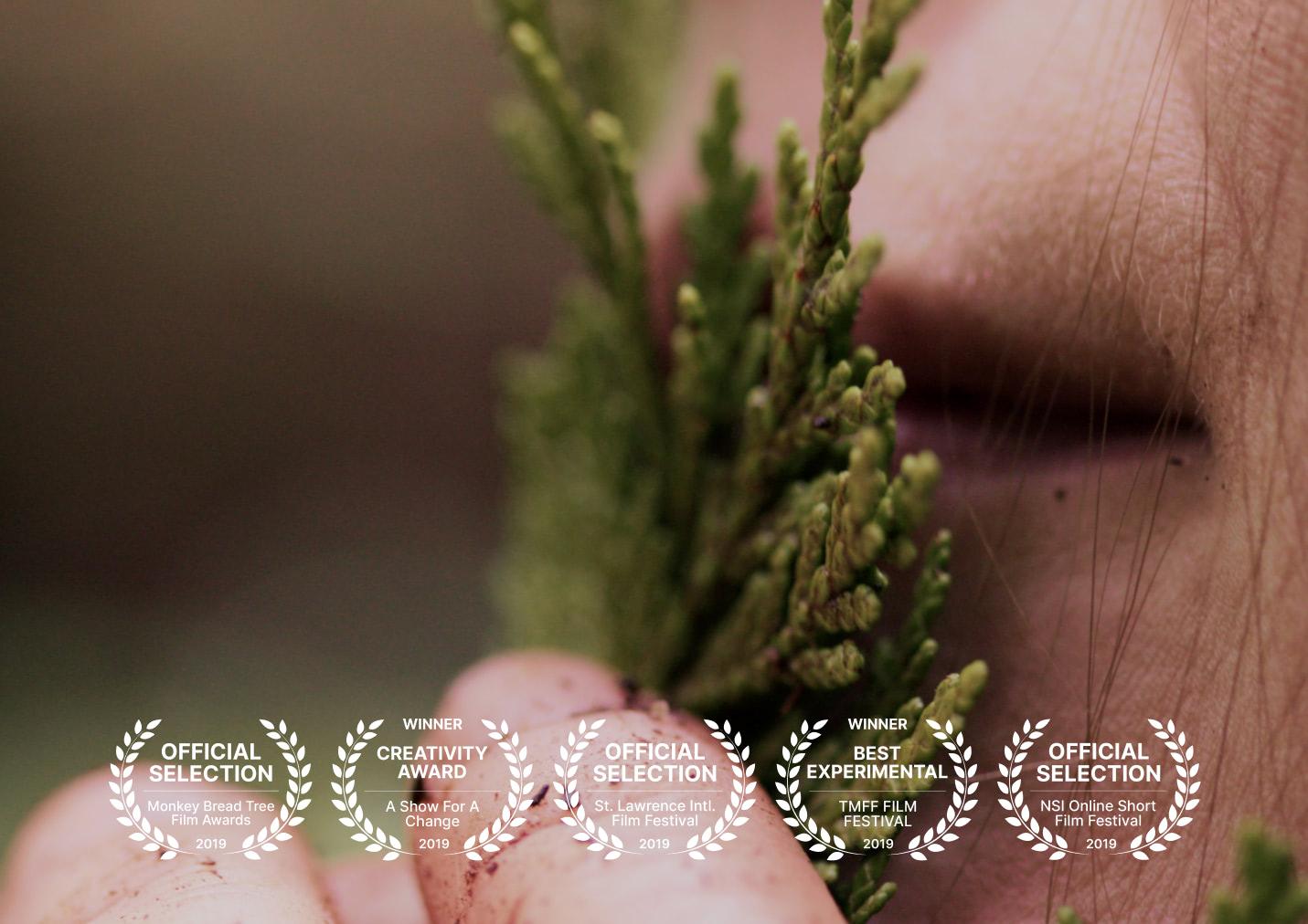 Solastalgia Short Film