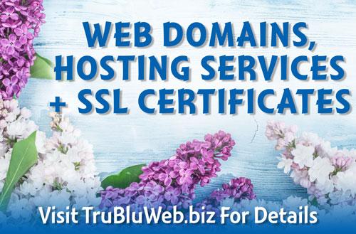 Web Domains, Hosting Services + SSL Certificates