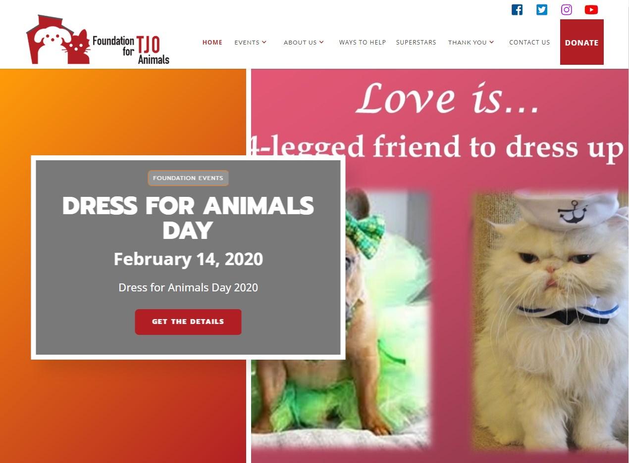 Tjo Foundation For Animals website screenshot