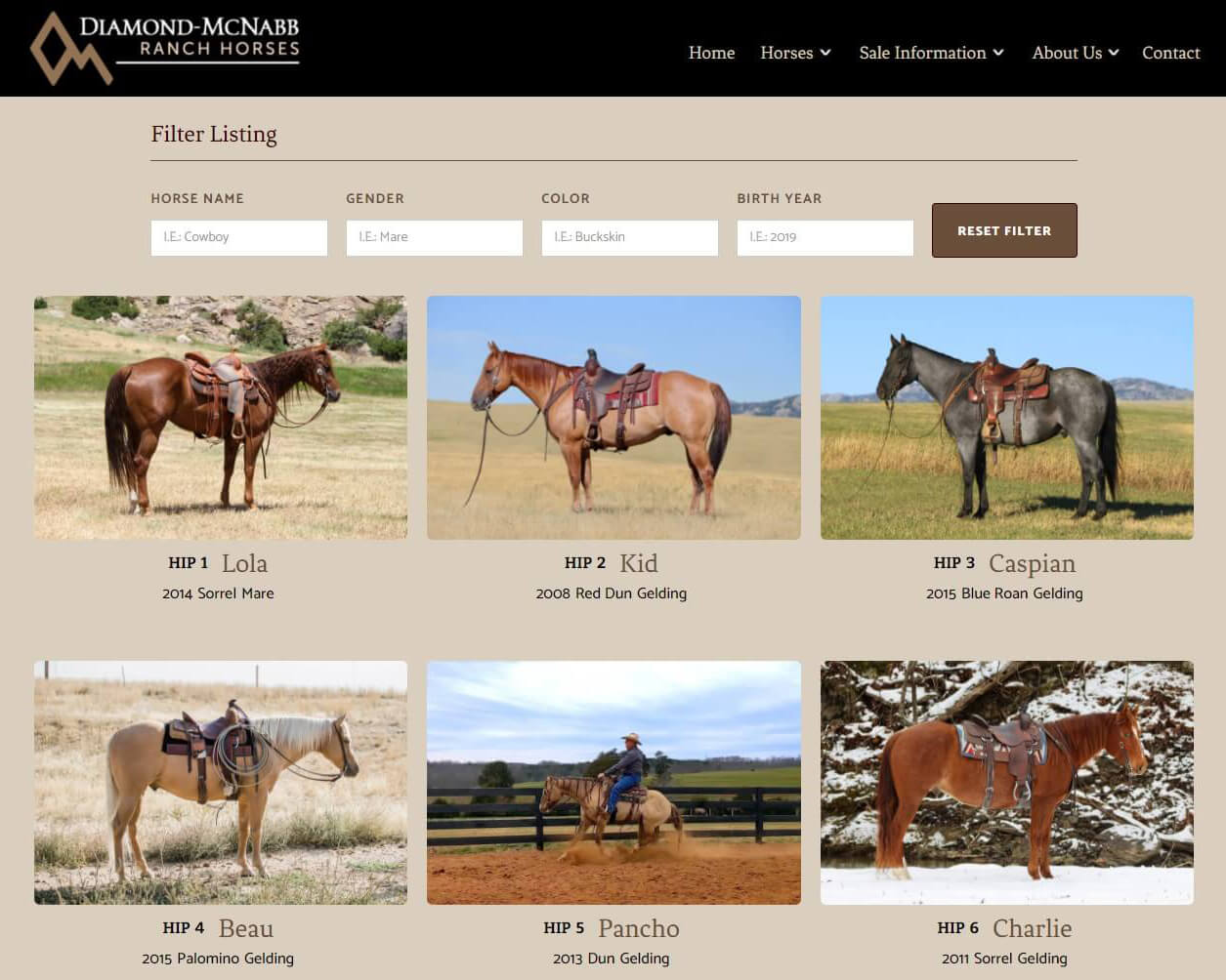 Diamond-McNabb Ranch Horses