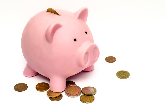How much does long term care cost?