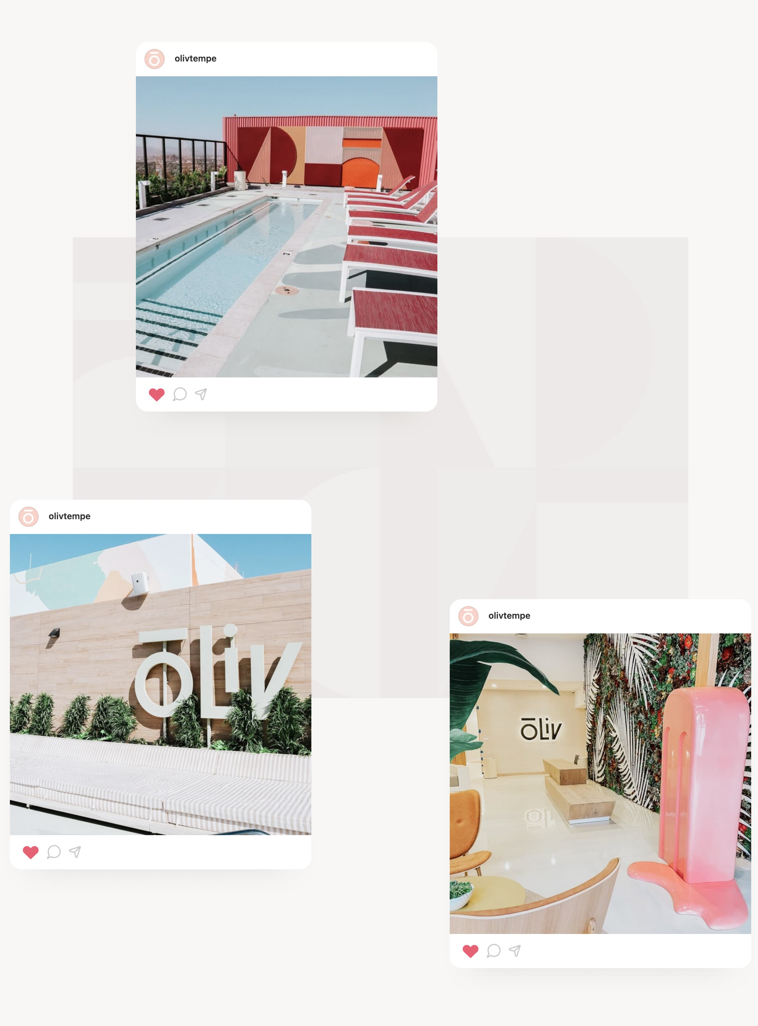 A series of three images showing Instagram stories designed in the new ōLiv brand language.