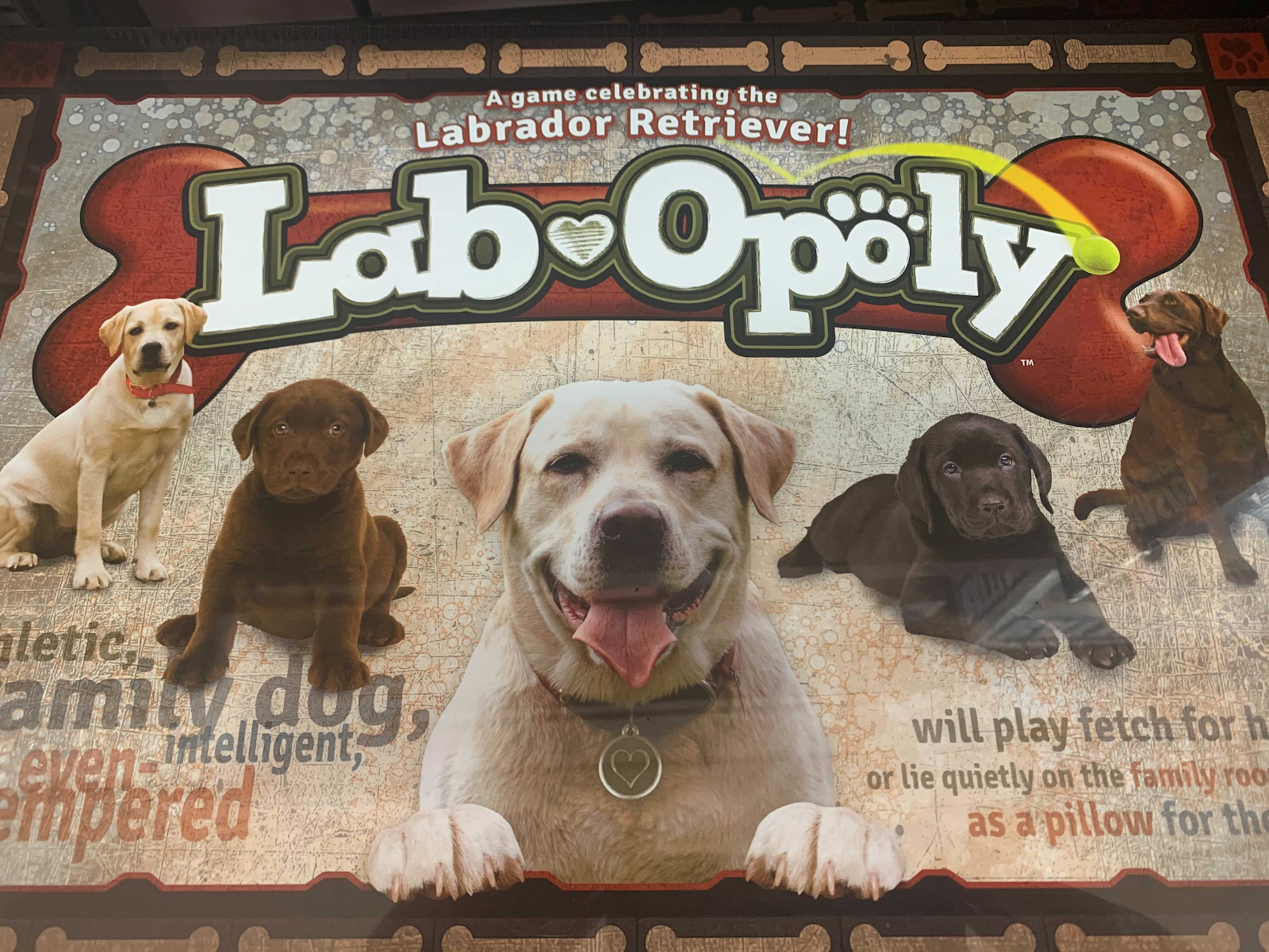 lab opoly dog monopoly