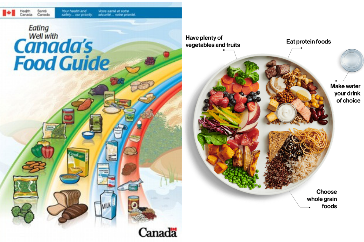 2007 Food Guide vs. 2019 Food Guide