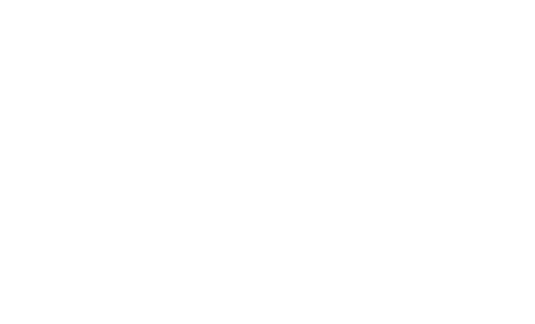 Walk/Bike/Places 2020