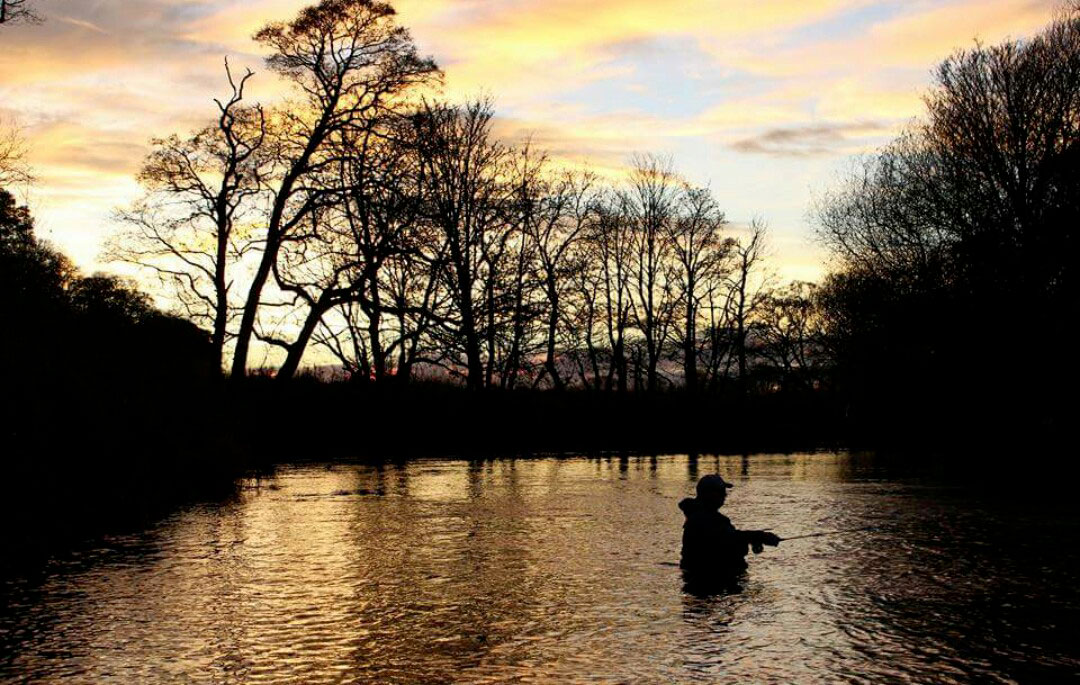 fly fishing for grayling