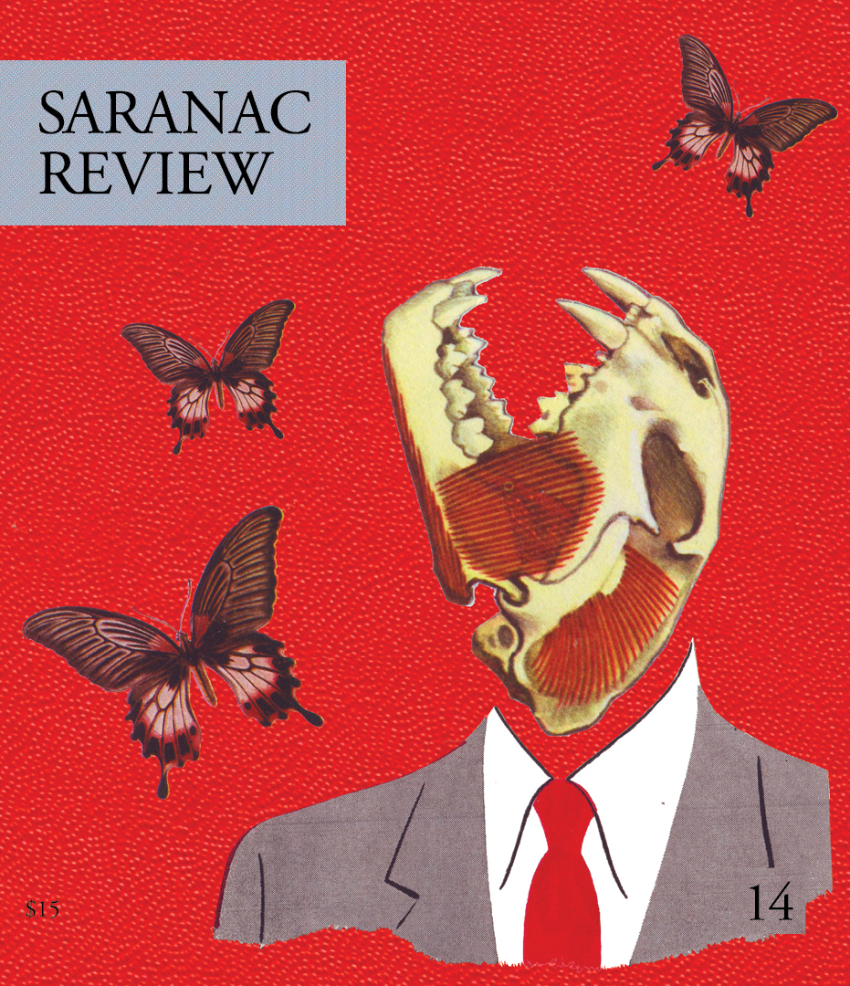 Saranac Review Issue 13 Cover