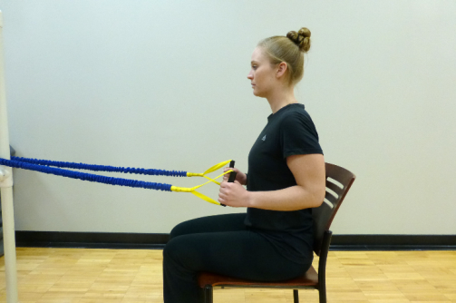 seated row exercise