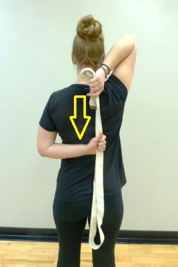 tricep stretch