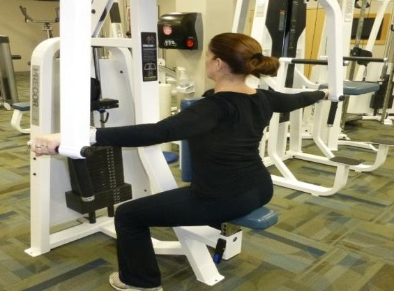 posterior delt fly exercise