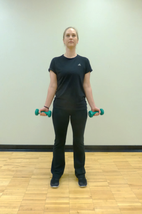 bicep curl exercise