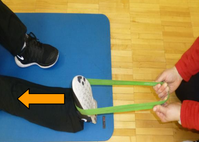 dorsiflexion theraband exercise