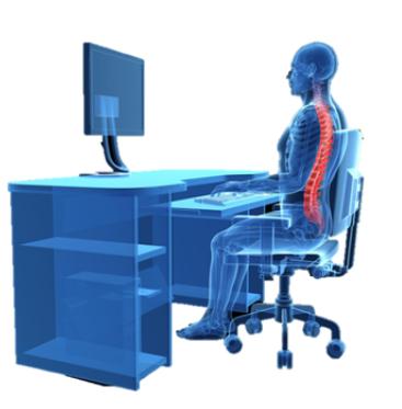 skeleton sitting in chair proper back alignment