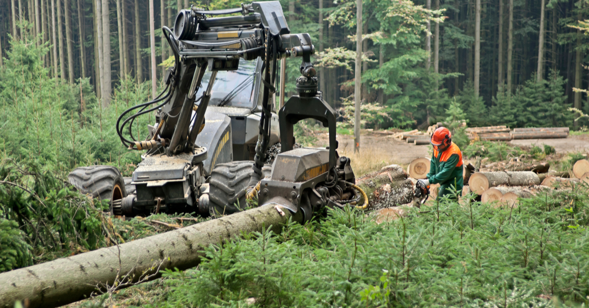 logging machine in use