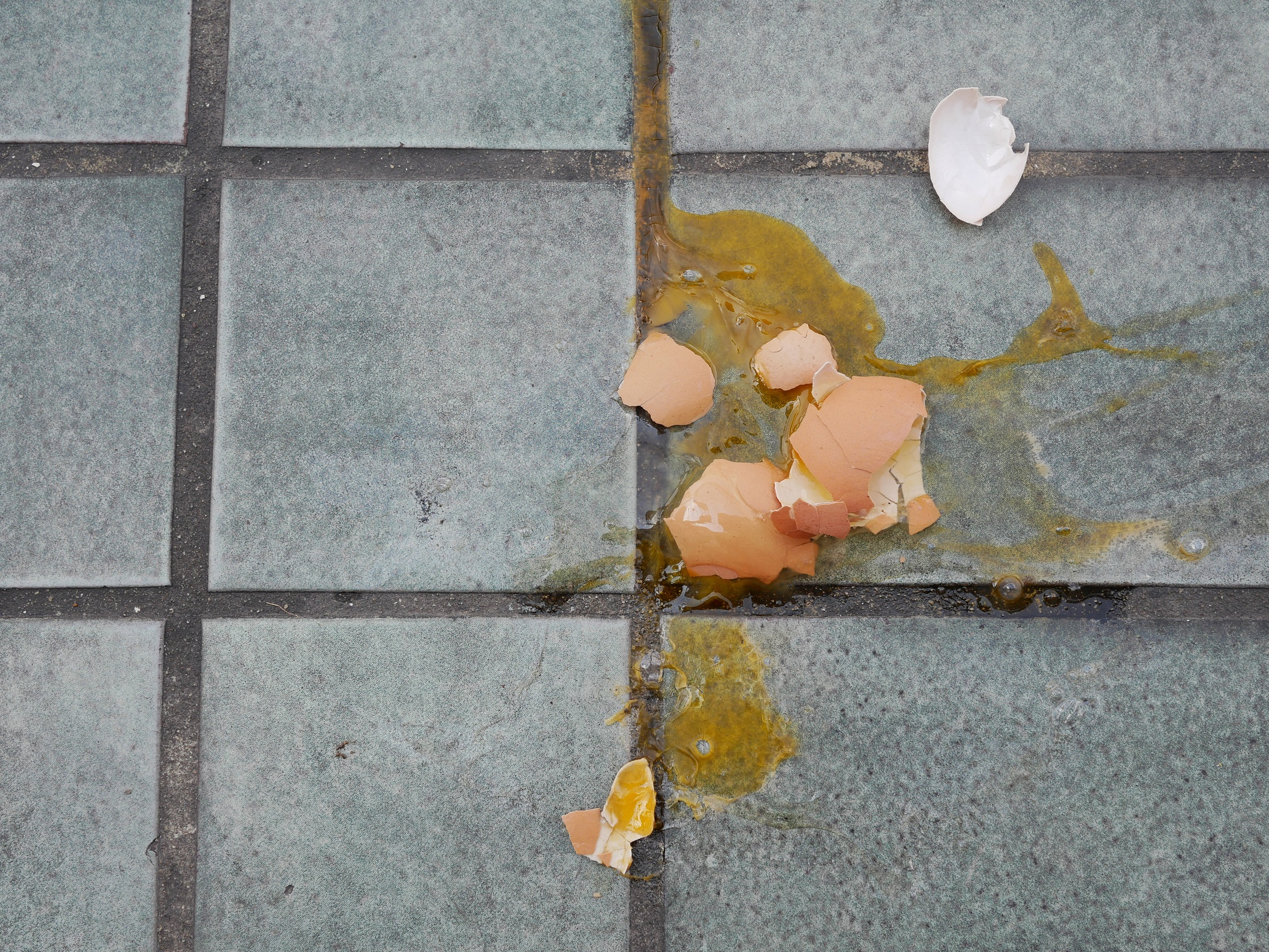 egg smashed on the ground
