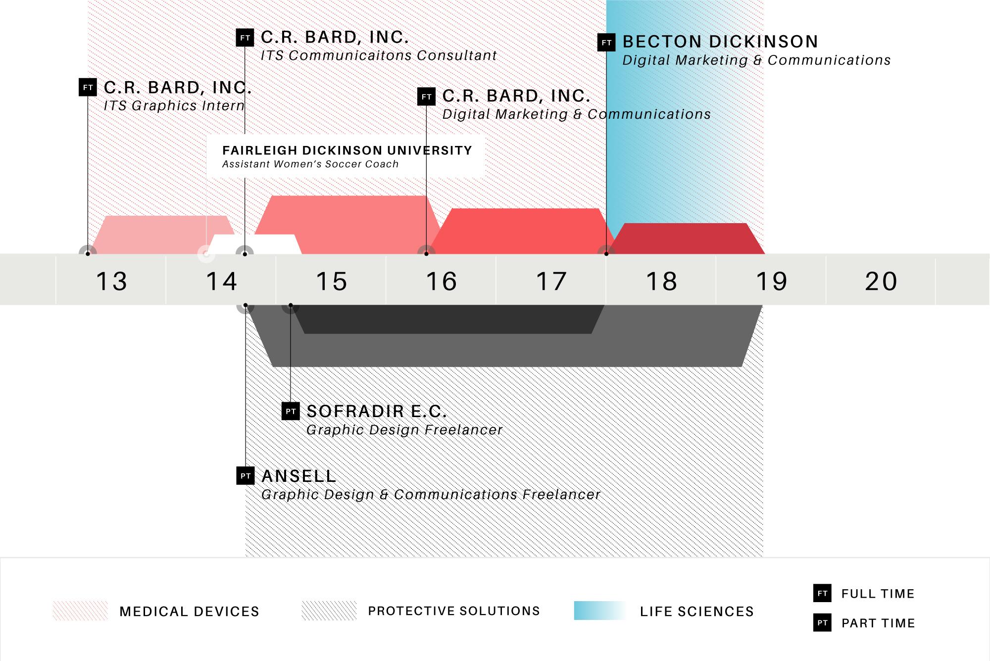 Creative Resume Timeline