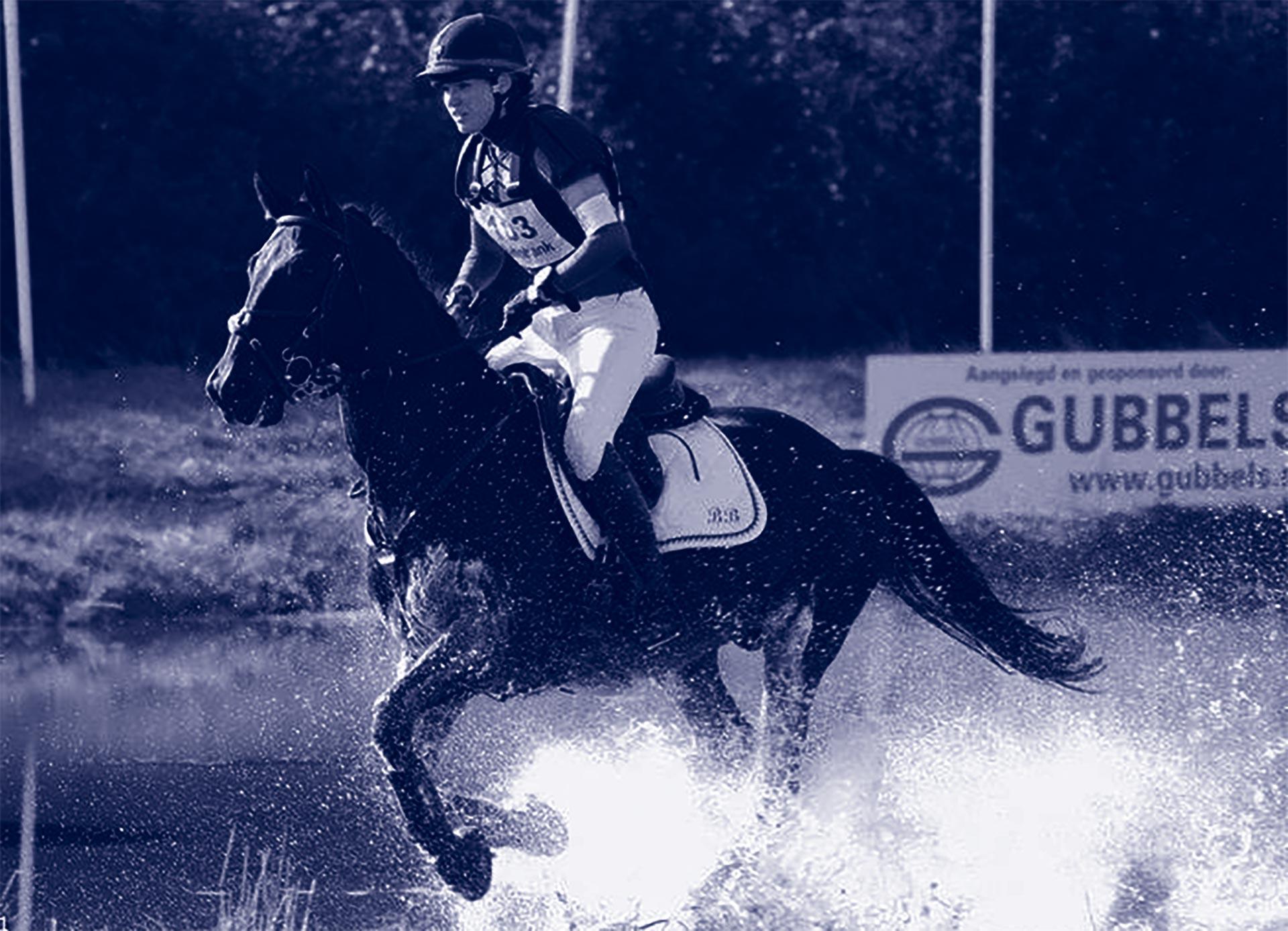 Hobby- of bedrijfsmatig paarden houden?