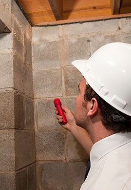 Building inspection service and survey