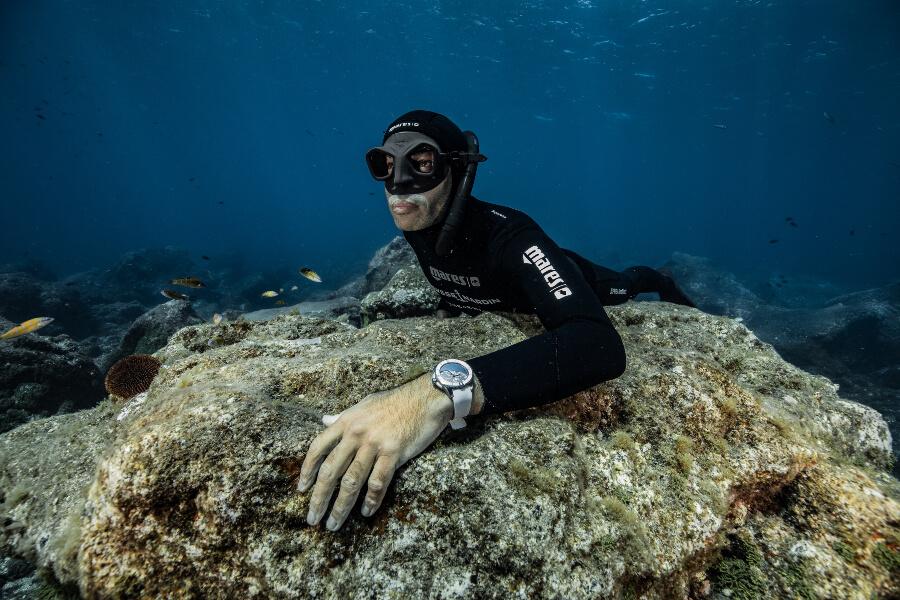 Ulysse Nardin Diver Chronometer Great White Limited Edition