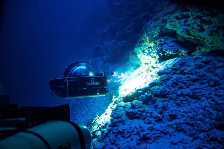 Nekton submarine