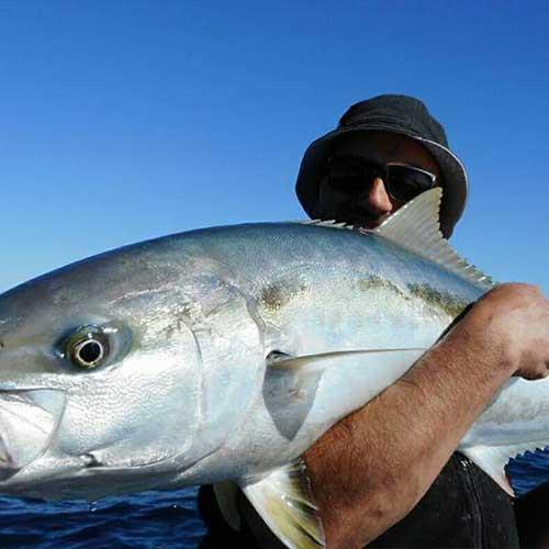 Kingfish Charters Bay of Islands